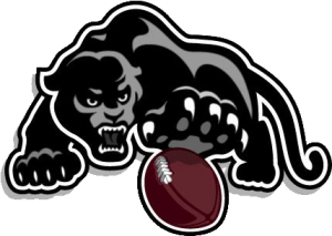Panther-w-ball-left