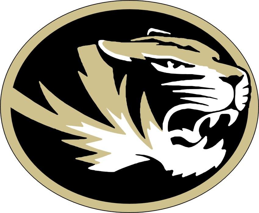 Image result for truman tiger logo
