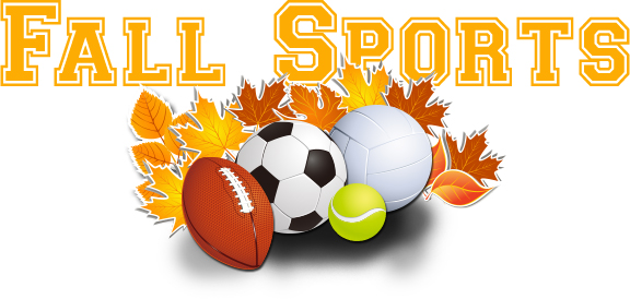 Image result for fall sports images